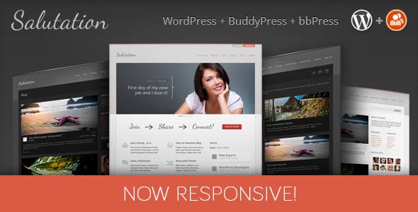 tema-buddypress-community
