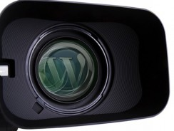 I migliori temi WordPress per siti e blog di Video