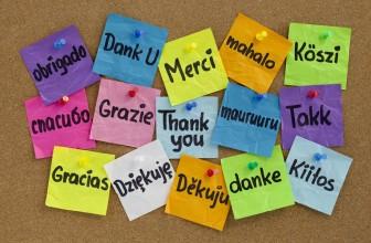 Tradurre articoli da altre lingue e pubblicarli sul blog: sbagliato?