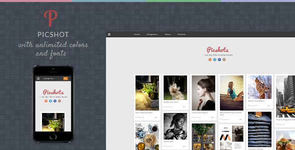 picshot-blogspot-template-fotografia