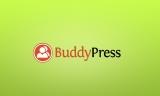I migliori temi per community su WordPress con BuddyPress