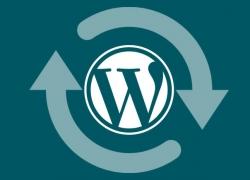 Aggiornare WordPress e Plugin immediatamente: è sempre giusto?