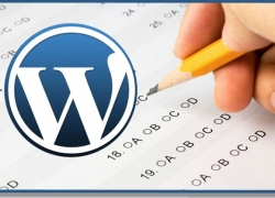 Come mostrare articoli di una o alcune categorie in Home WordPress