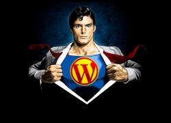 Usare WordPress: Pro e Contro del CMS più diffuso