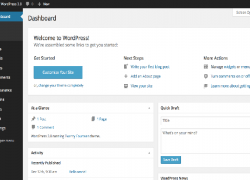 Personalizzare Backend WordPress: temi per il lato admin